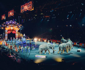 Helping a good cause with Circus Starr